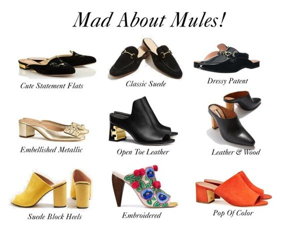 Mad About Mules